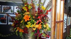 "Flower Festival Sept 2011_29 • <a style=""font-size:0.8em;"" href=""http://www.flickr.com/photos/62165898@N03/6146737764/"" target=""_blank"">View on Flickr</a>"
