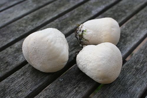 Three perfect puffballs