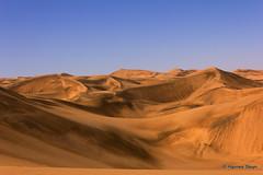 The Namib in all it's Glory (hannes.steyn) Tags: africa nature canon landscapes sand scenery desert dunes getty namibia reserves namib namibdesert 550d hannessteyn canonefs1855mmf3556isusm canon550d eosrebelt2i namibnaukliftpark gettyimagesmeandafrica1