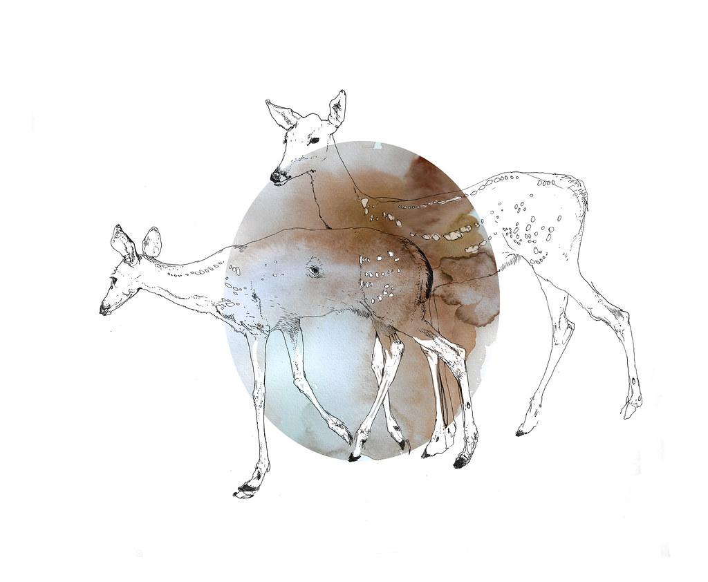 damaged fawns