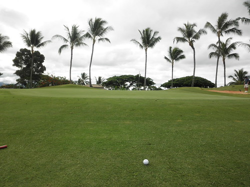 WAIKELE COUNTRY CLUB 077