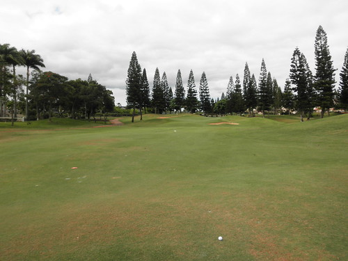 WAIKELE COUNTRY CLUB 059