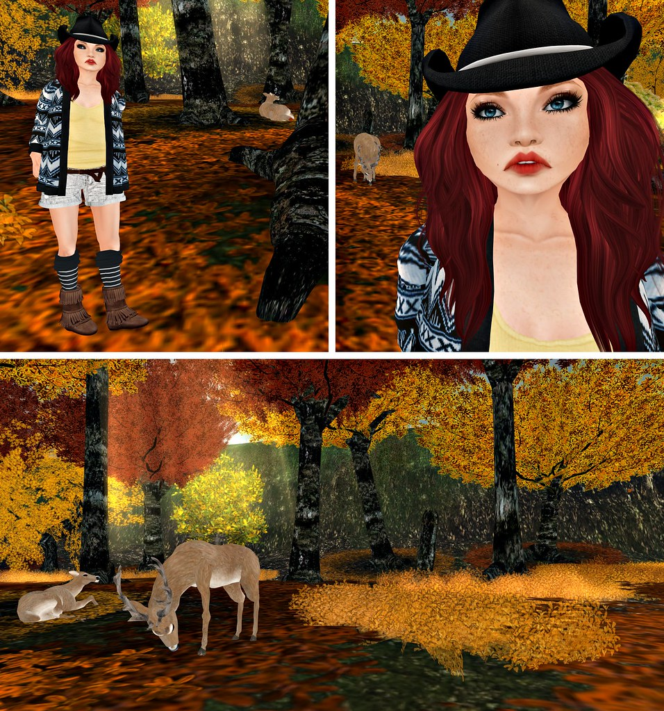 Aztec Cowgirl Lost In The Woods