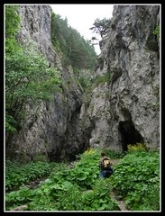 Prosiecka Dolina (Real Traveler) Tags: travel nature outdoors europe hiking cliffs limestone slovakia limestonecliffs limestonecanyon prosieckadolina