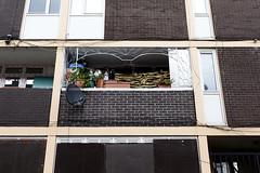 Grid (See The Bear - slowly getting back) Tags: street urban dublin streetphotography spnp