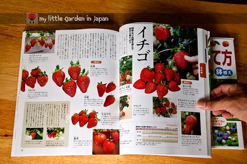 Garden-books-1