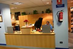 Frontal del mostrador con dos de los trabajadores