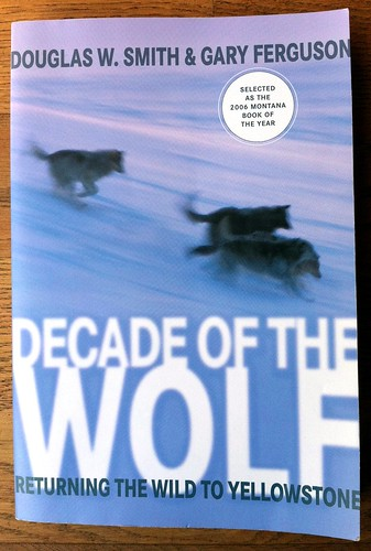 Decade of the Wolf