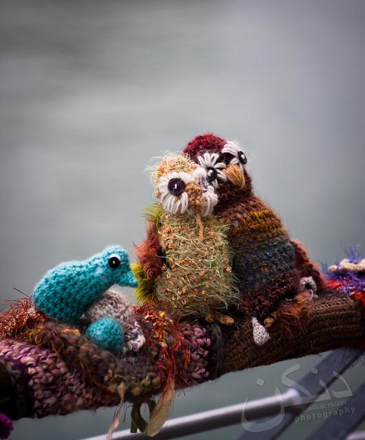 Members of the Woolly-walk-along