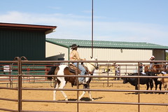 IMG_5422 (tanyerhide) Tags: ranch horses tree home training texas tank forsale realestate cattle farm business land redoak saddle crates reiner steers countryhome tomdavis ranchrodeo cowcamp tracidavis tntweatherford woman~wife~mom~multitasker