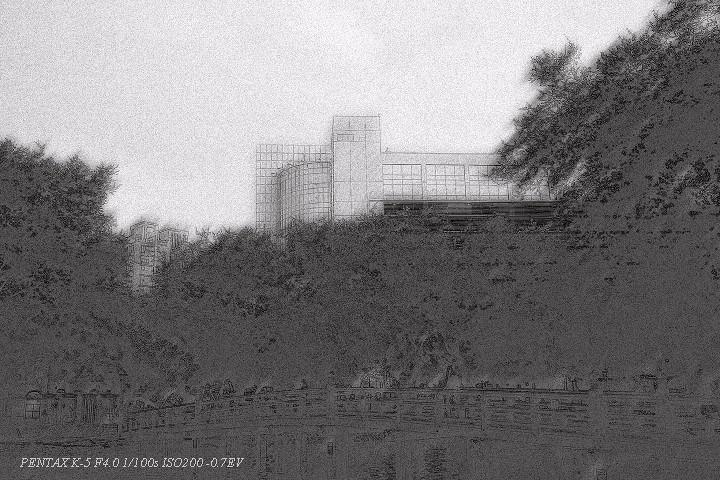 K-5 濾鏡隨拍-台中公園
