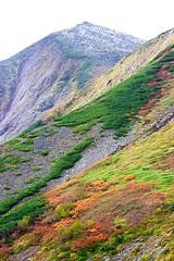 雪化粧の東岳