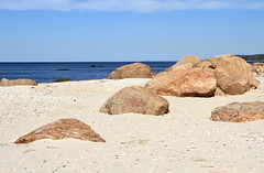 Glacial Erratics (sandy richard) Tags: usa newyork unitedstates geology wildwood calverton wildwoodstatepark newyorkstateparks sandyrichard longislandgeology sandrarichard