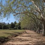 "Parque San Martín <a style=""margin-left:10px; font-size:0.8em;"" href=""http://www.flickr.com/photos/14315427@N00/6189515427/"" target=""_blank"">@flickr</a>"