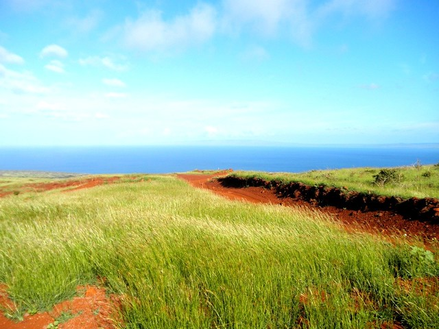 Road to Polihua Beach, Lanai Hawaii