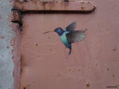 Hummingbird by Dan Witz