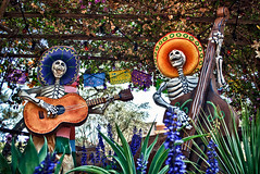 To Die For (hbmike2000) Tags: halloween dayofthedead skeleton nikon bass guitar disneyland disney resort singers diadelosmuertos sombrero d200 hdr frontierland hbmike2000