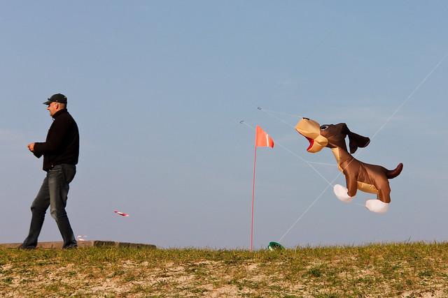 aan de Hondsbossche zeewering