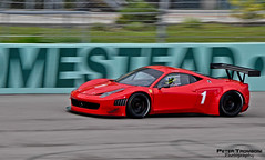 458 GT3 (Peter Tromboni Photography) Tags: cars sports miami 360 ferrari racing exotic enzo cs homestead challenge speedway stradale supercars 430 f40 f50 458 333sp