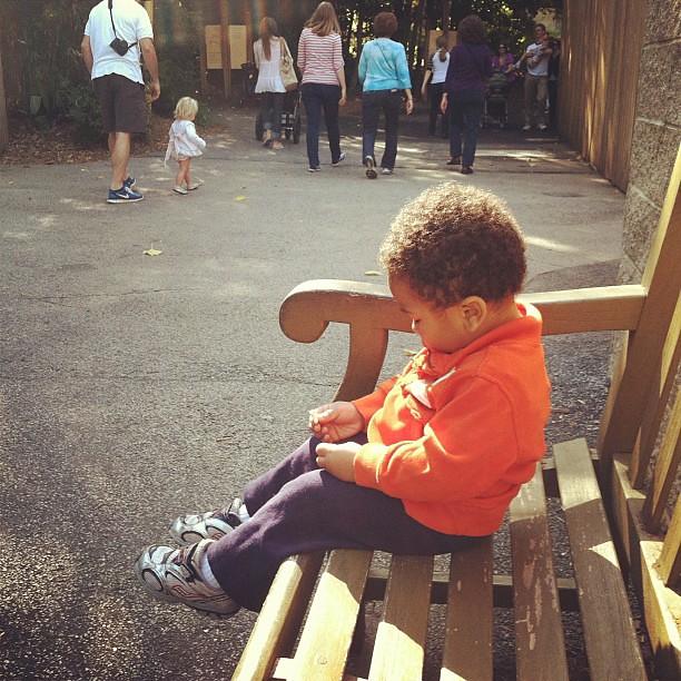 Snack break at the zoo