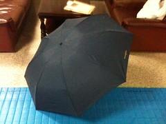 大きな折り畳み傘