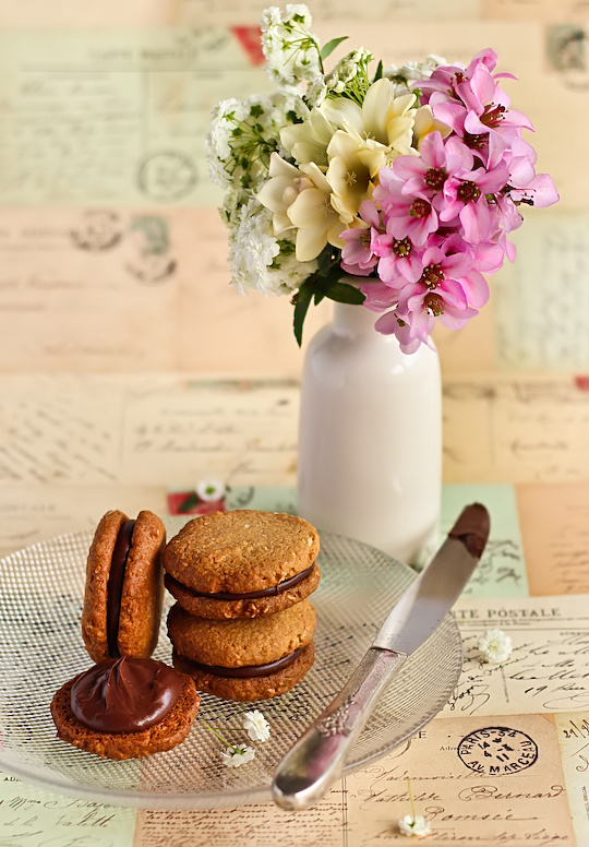 oat_coconut_choc_biscuits-2