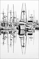 (alliance1) Tags: bw marina boats humboldt explore eureka 35mmsummicron leicam9
