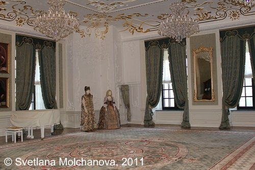 Mir.Castle's.interiors.5