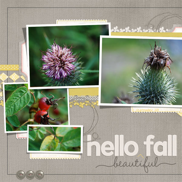 Hello Beautiful Fall | left side