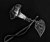 DSC_9528 Crop (shutterbugbekkie) Tags: flowers blackandwhite morningglory sbfmasterpiece