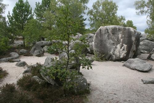 Cul De Chien area