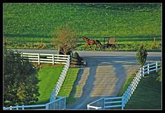 Amish transport - Charm, Ohio (sjb4photos) Tags: fence amish buggy charmohio charmcountryviewinn ohioamishcountry alltypesoftransport