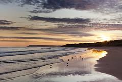 East Strand Sunrise (Ian Humes) Tags: sea beach sunrise reflections waves northernireland seabirds portrush countyantrim cccl