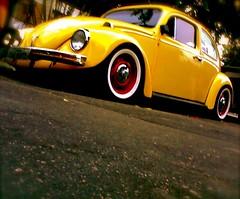 Fuscão 72 (seu Marques) Tags: yellow vw bug beetle amarelo fusca