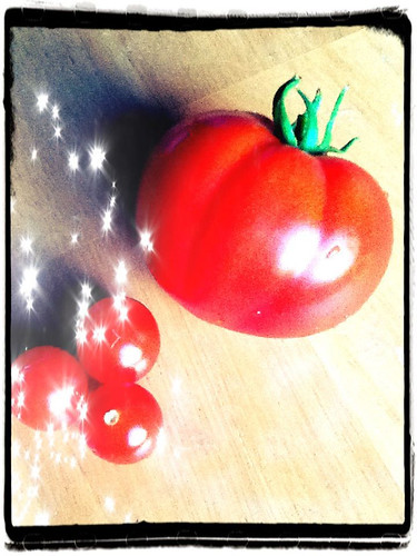 first big tomato!