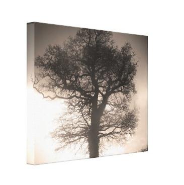 Lienzo árbol sepia