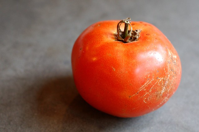Tomato by Eve Fox, Garden of Eating blog, copyright 2011