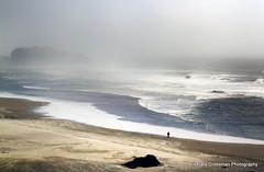 Bandon Solitude {Explore} (Gary Grossman) Tags: ocean sea seascape beach fog oregon landscape solitude niceshot pacific foggy pacificocean reflective oregoncoast bandon bandonbythesea foggybeach beachsolitude mygearandme