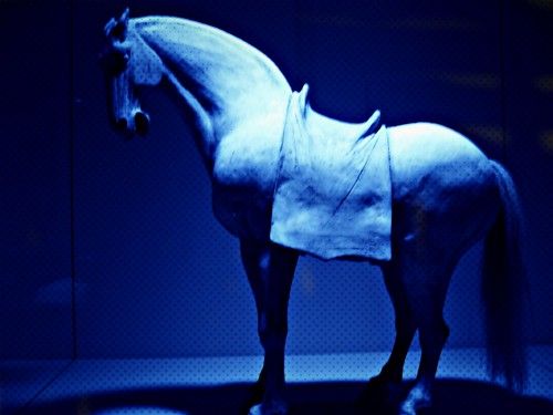 Asian Horse