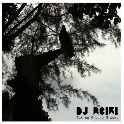 DJ Reiki Taking Ground