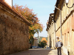 September afternoon in Vilnius (Loreta S) Tags: street old autumn boy shadow sun tree brick wall oldtown lithuania vilnius climbers narow unescoworldheritagesites bobvasara