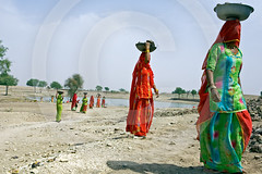 Indian Women Working Rajasthan India (Roger Cracknell Photography) Tags: travel woman color colour heritage work workers desert traditional culture clothes destination historical tradition hardwork atmospheric touristattraction cultural attraction physical indianportraittourism