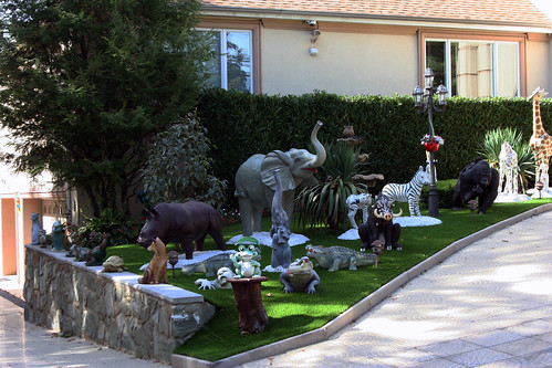 Zoo House (07)
