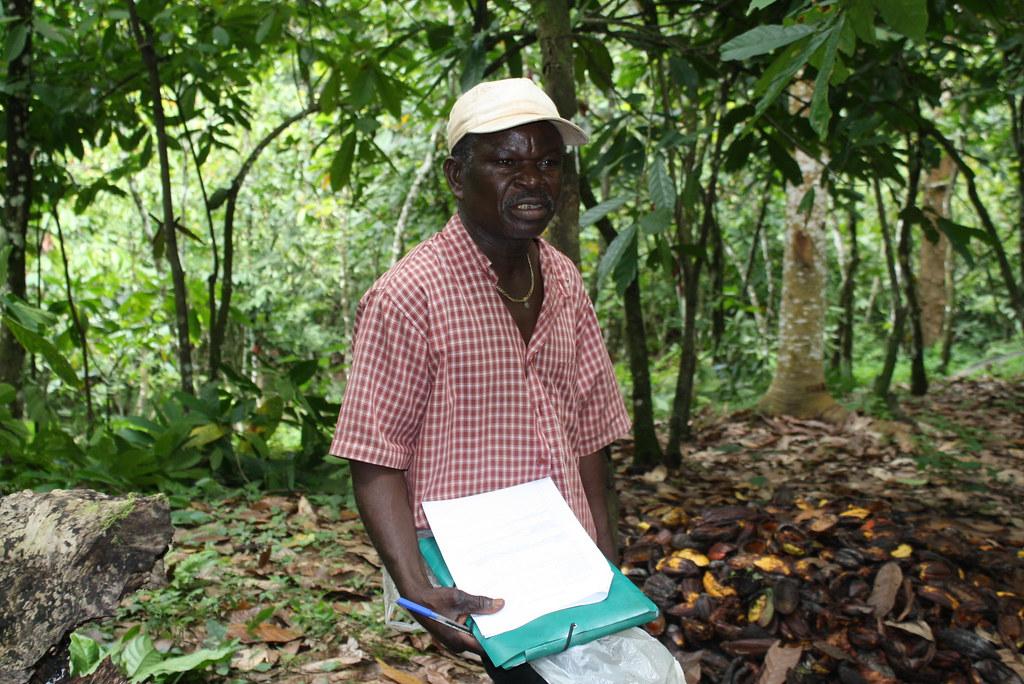 Formateur local cacao bio Togo