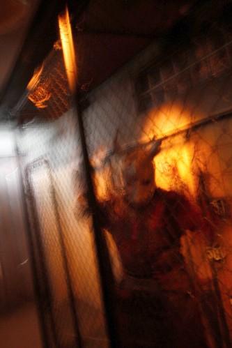 Hostel - Haunted House
