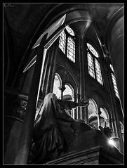 NOTRE DAME. III (Raul Juan) Tags: light blackandwhite bw sun white black paris art blancoynegro blanco luz sol church soleil noir arte cathedral interior interieur negro dramatic catedral iglesia indoor bn escultura lumiere contraste scultpture estatua blanc eglise esculpture brillo goti