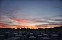 Berlin (GZZT) Tags: berlin germany europa mitte mb petereisenman holocaustmahnmal stelen 030 denkmalfrdieermordetenjudeneuropas betonquader mittemitte gzzt martinbriese