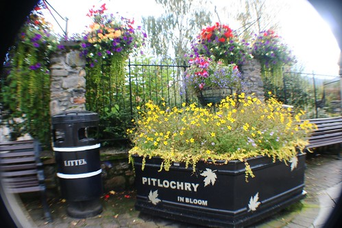 Pitlochry in Bloom