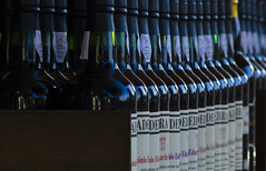 Bottles (malkv (400,000 + Views)) Tags: bottle dof wine bottles row maderia malkv