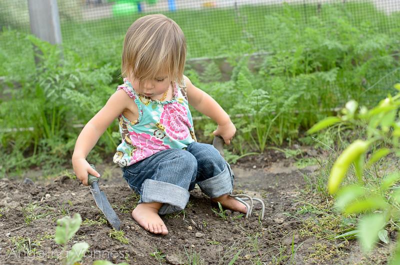 Playground and Gardening12